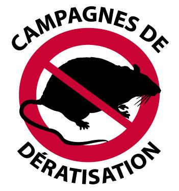 Campagne annuelle de dératisation